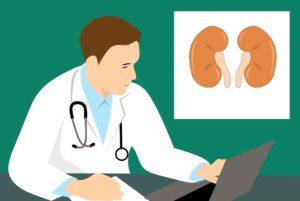 O que é uma biópsia renal?